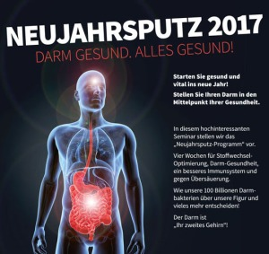 neujahrsputz-2017